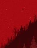 Starry winter night vector illustration