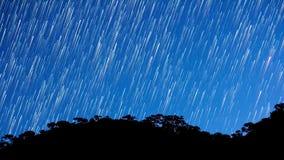 Stars al rallentatore video d archivio