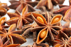 Stars anise Royalty Free Stock Images