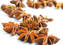 Stars anise Royalty Free Stock Photography