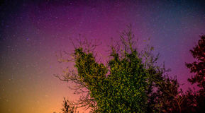 Stars with colored sky Stock Images