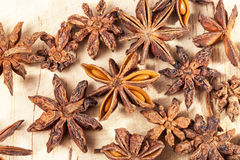 Stars of dried anise Illicium verum  on  wooden plank Royalty Free Stock Photo