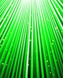 Stars are falling on the background of green rays. Stock Photography
