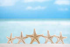 5 stars fish, white starfish with ocean, boat, white sand beach, Royalty Free Stock Photo