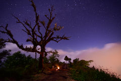 Stars and fog at night in the mountains. Stars and fog at night in the mountains at Chiang Mai, Thailand Stock Photo