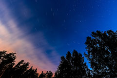 Stars at long exposure. On the blue sky with trees silhouette Stock Photography
