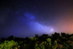 Stars, milky way. Sky with stars above forest, night, landscape Royalty Free Stock Images