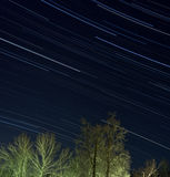 Stars over winter forest. 2 hour total exposure star trails shot Royalty Free Stock Image