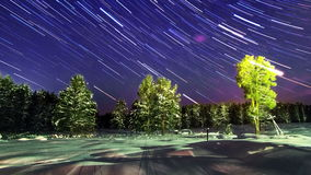 Stars over the winter forest. Line. Time Lapse. 4 stock footage