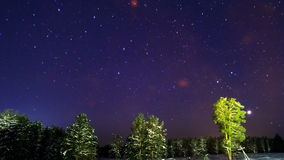 Stars over the winter forest. Time Lapse. 4K Royalty Free Stock Photo