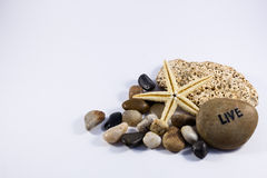 Stars sea vacantion life beach sand Royalty Free Stock Photos