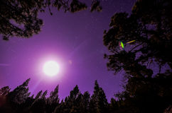 Stars in the Sky at Night Royalty Free Stock Photography