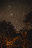 Stars and Trees at Umphang in Tak Province in Northwestern Thailand.  Stock Image
