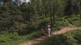 Starsi ludzie wysoki fiving podczas bieg w lato parku Strzelać od trutnia zbiory