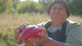 Starsi ogrodniczka chwyty w jego rękach uprawa warzywa na tle ogród Żywność organiczna zbiory