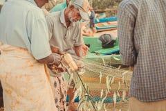 Starsi rybacy rozładowywają ryba po łowić w oceanie indyjskim Zdjęcie Royalty Free