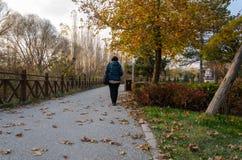 Starsza kobieta chodzi przy parkiem fotografia royalty free