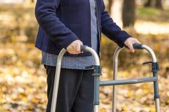 Starsza kobieta iść na piechotę odprowadzenie z piechurem w jesień parku obraz stock
