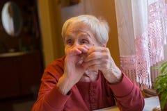 Starsza kobieta opowiada siedzieć przy stołem Obraz Royalty Free