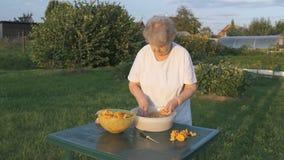 Starsza kobieta 80s czyści chanterelle pieczarki zbiory