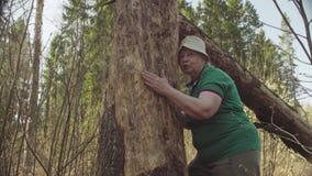 Starsza kobieta w lasowym przytuleniu uszkadzający drzewo zbiory