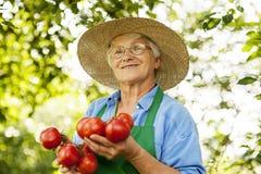 Starsza kobieta w ogródzie obraz royalty free