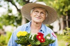 Starsza kobieta w ogródzie obrazy royalty free