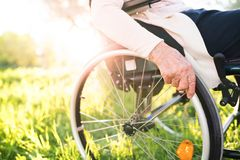 Starsza kobieta w wózku inwalidzkim w wiosny naturze zdjęcie stock