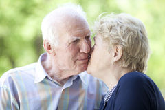 Starsza miłość Zdjęcia Stock