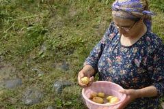 Starsza Muzułmańska kobieta trzyma małą menchię myje balię świeży pota Fotografia Stock