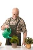 starsza osoba mężczyzna zasadza podlewanie Zdjęcia Royalty Free