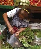 Starsza osoba przy owoc i warzywo rynkiem, illustrative rysunek ilustracja wektor