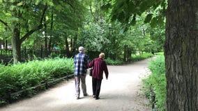 Starsza para cieszy się chodzić w lato parku zbiory wideo