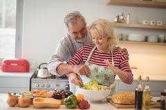 Starsza para miesza warzywa sałatkowych w pucharze Fotografia Royalty Free