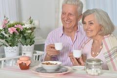 Starsza para pije herbaty Zdjęcie Royalty Free