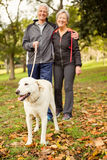 Starsza para w parku z psem fotografia royalty free