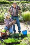 Starsza szczęśliwa para angażująca w ogrodnictwie Fotografia Royalty Free