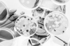 Starsze nauki przyrodnicze badacza kopulizaci bakterie fotografia stock