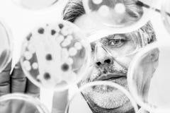 Starsze nauki przyrodnicze badacza kopulizaci bakterie obraz stock