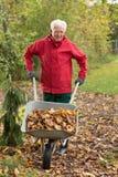 Starszego mężczyzna cleaning ogród Fotografia Royalty Free