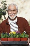 Starszego mężczyzna mienia taca Z Flowerpots zdjęcia stock