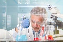 Starszej nauki przyrodnicze badawczy badać w nowożytnym naukowym laboratorium zdjęcia stock