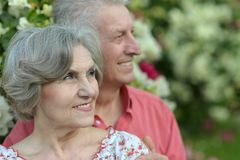 Starszej osoby piękna para Obraz Royalty Free