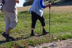 starszej pary plenerowy ćwiczenie z chodzącymi kijami obraz royalty free
