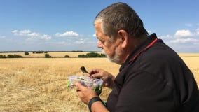 Starszy średniorolny łasowanie dekatyzował warzyw siedzieć plenerowy przeciw zbierającemu pszenicznemu polu niebieskiemu niebu i zbiory wideo