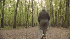 Starszy aktywny kobiety odprowadzenie z trekking s?upami zbiory wideo