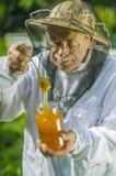 Starszy apiarist sprawdza jego mi?d w pasiece zdjęcie stock