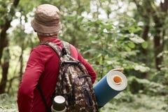 Starszy backpackers chodzi wzdłuż drogi w lesie, eldery podróżnik są ubranym czerwonego przypadkowego pulower, nakrętka, plecak,  zdjęcie royalty free