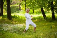 Starszy kobiety kung fu zdjęcie stock
