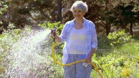Starszy kobiety podlewania gazon wężem elastycznym przy ogródem zbiory